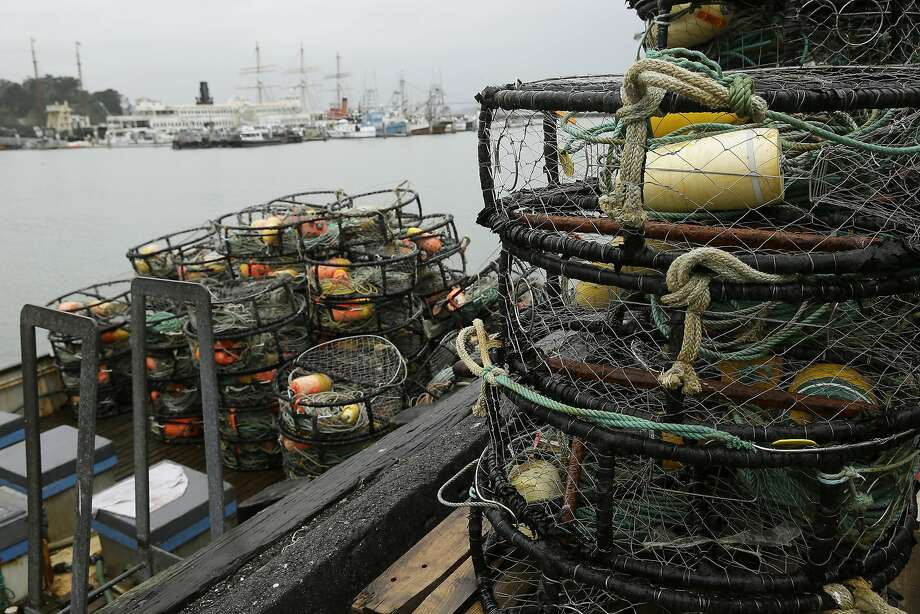 Crab pots sit on a processing pier and the back of a boat at Fisherman's Wharf Tuesday, Jan. 3, 2017, in San Francisco. Dungeness crab could be harder to come by if fishers from Canada to Northern California continue their strike over the purchase price. The strike started December 28 after Pacific Choice Seafood in Humboldt County, California, offered to pay $2.75 a pound for the tasty crustacean. Crabbers whose seasons had already opened had negotiated a price of $3 per pound. (AP Photo/Eric Risberg) Photo: Eric Risberg, Associated Press