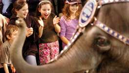 Megan Shiskin, center, 8, of Monroe reacts as an elephant walks by her during the pre-show of the Ringling Bros. and Barnum and Bailey Circus held at the Harbor Yard Arena in Bridgeport on Oct. 26, 2005. The circus quit using elephants and is now closing.