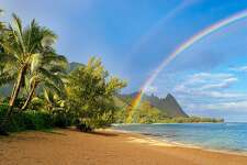 Seascape with rainbow and palm tree at tunnels beach, haena, Kauai, Hawaii.