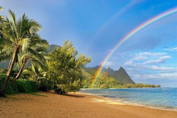 Seascape with rainbow and palm tree at tunnels beach, haena, Kauai, Hawaii.