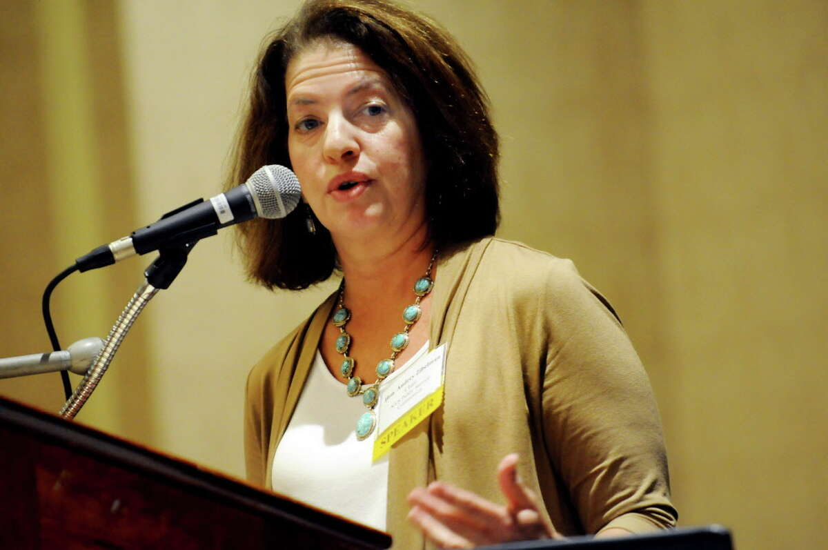 Audrey Zibelman, chair of the Public Service Commission, speaks during the Independent Power Producers of New York annual fall conference on Tuesday, Sept. 10, 2013, at Gideon Putnam Resort in Saratoga Springs, N.Y. (Cindy Schultz / Times Union)