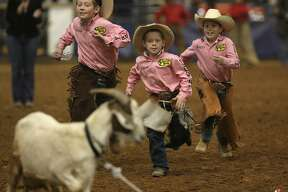 When the rodeo shows kids in action, such as the pictured goat milking event of the San Antonio Stock Show & Rodeo's 2009 Little Ranch Hand Rodeo, crowds cheer on the little buckaroos.
