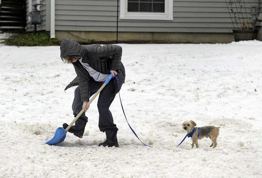 Laura Blake Of Grassy Plain Road In Bethel Clears A Path For Her Dog