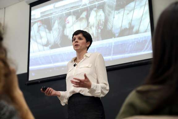 """Good Food Institute Senior Scientist Christie Lagally speaks during UC Berkeley's """"Plant-Based Meat Challenge Lab,"""" a class where students will compete to innovate new meat substitutes. Photographed in Berkeley, Calif., on Monday, January 23, 2017."""