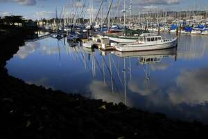 Boats sit idle at the Berkeley Marina , on Tuesday Jan. 24, 2017, in Berkeley, Ca., under blue skies as the Bay Area gets a break from the recent rains.