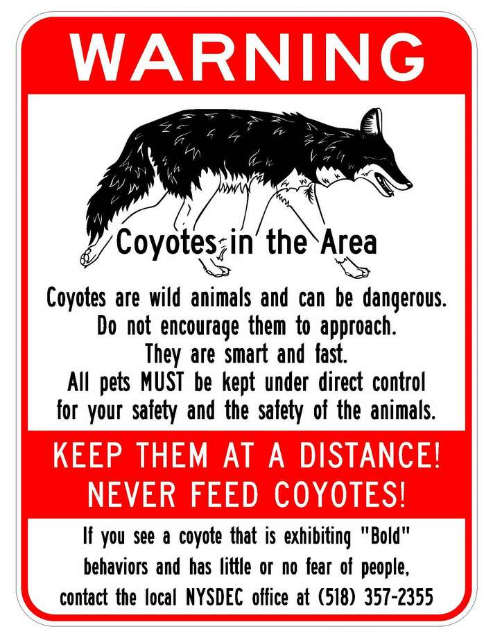 The city of Albany posted signs in January 2017 warning of coyotes in and around the Normans Kill. (City of Albany) Photo: City Of Albany