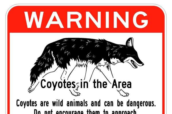 The city of Albany posted signs in January 2017 warning of coyotes in and around the Normans Kill. (City of Albany)