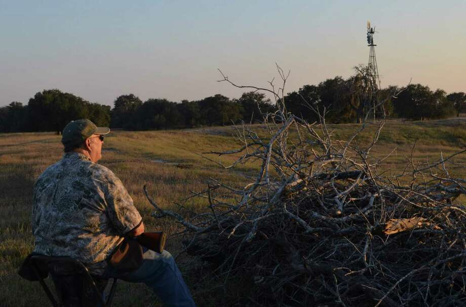 The longest dove season in Texas history allowed hunters more days in the field, although many wingshooters spent that time watching and waiting for birds that never appeared because of weather conditions pushing doves out of their normal flight patterns. Photo: Ralph Winingham / For The Express-News