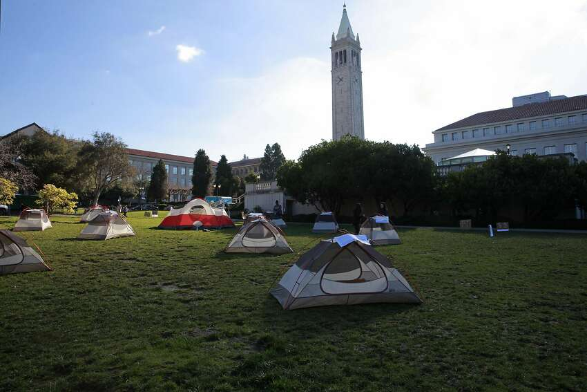UC Berkeley students set up a tent city to show their opposition to a proposed UC tuition increase being voted on today by the UC Regents, on Thursday Jan. 26, 2017, in Memorial Glade, in Berkeley , Ca.,