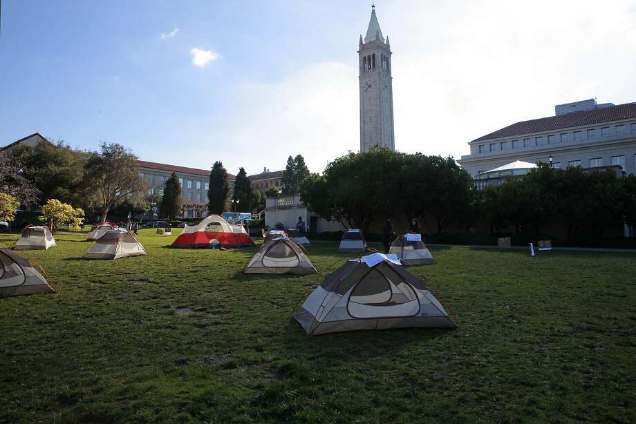 UC Berkeley students set up a tent city to show their opposition to a proposed UC tuition increase being voted on today by the UC Regents, on Thursday Jan. 26, 2017, in Memorial Glade, in Berkeley , Ca., Photo: Michael Macor, The Chronicle