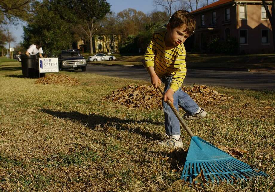 In October the lawn has switched to its autumn growth mode, so it is time to apply a winterizer fertilizer, which will be utilized by the lawn for winter hardiness and a fast green-up in the spring. Photo: Express-News File Photo / SAN ANTONIO EXPRESS-NEWS