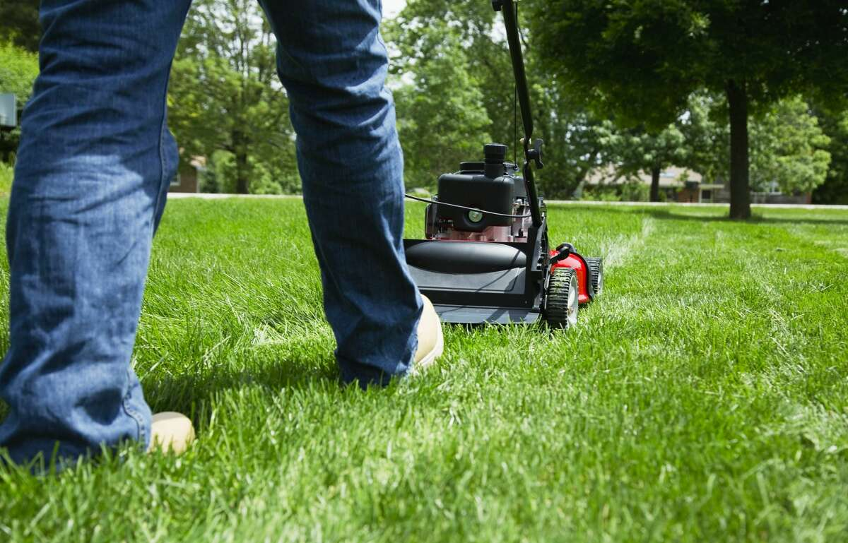 You will wait as long as possible to mow your lawn, and get all annoyed when your neighbor mows his, because yours looked fine before and now it looks terrible.
