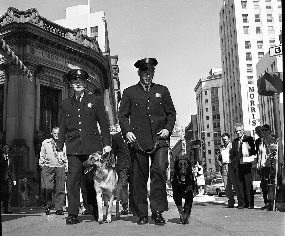 Officers Robert McDonnell and Mario Touani walk with Sultan and Neemo, two of the city's first police dogs, in 1962. Photo: Bob Campbell, The Chronicle