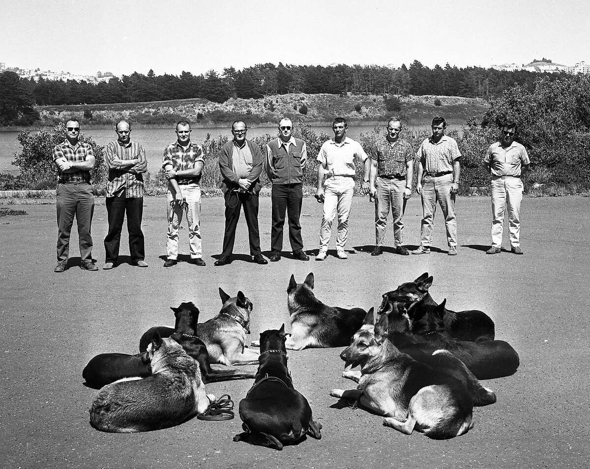 S.F. police officers work in August 1963 with the K-9 corps, which debuted with six dogs in late 1962.