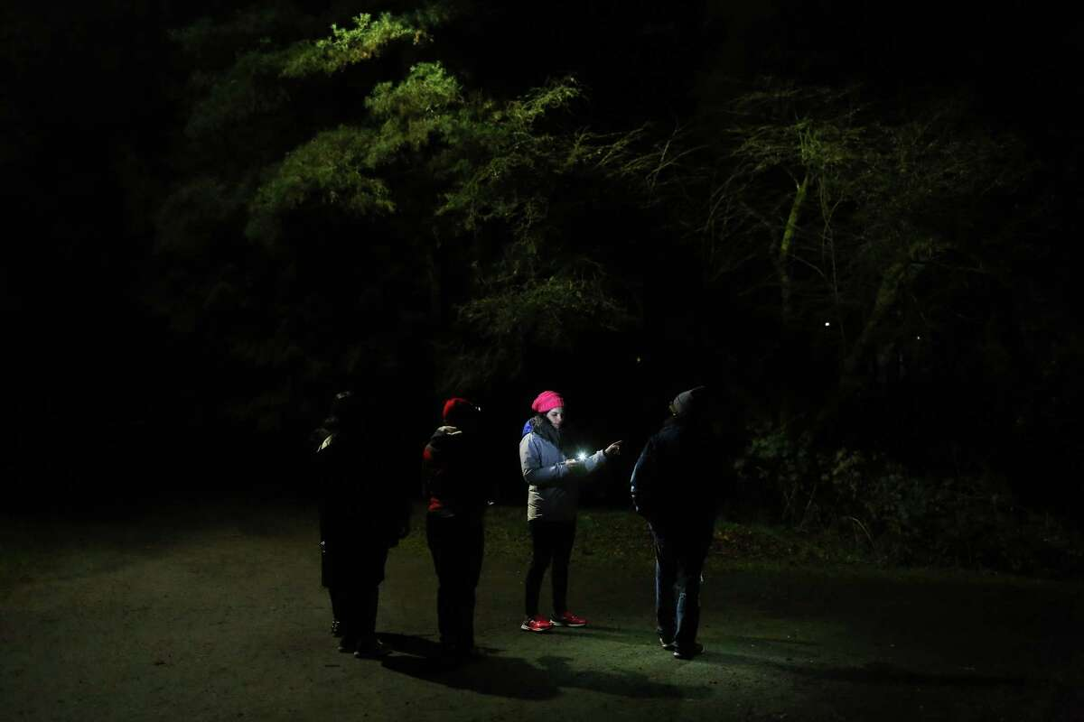 Hannah Hunthausen leads her group through Ravenna Park as they take part in the annual Point in Time count, early Friday morning, Jan. 27, 2017. Around 1,000 volunteers and guides spread out across the city Friday to count the number of people living without shelter.