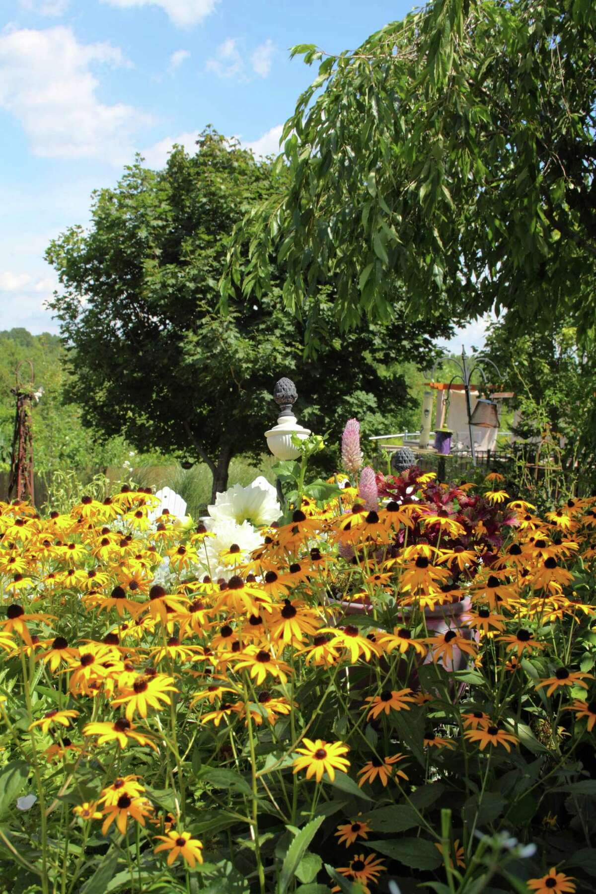 Denise and Don Maurer's garden in Troy