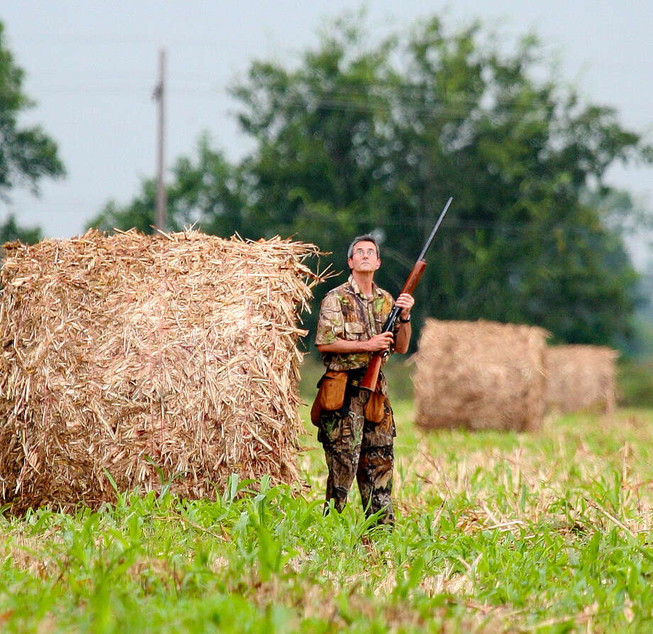 The state's 400,000 dove hunters would see expansion of the four-day, early-September white-winged season to the entire South Dove Zone under proposals announced by state wildlife officials. Photo: Shannon Tompkins