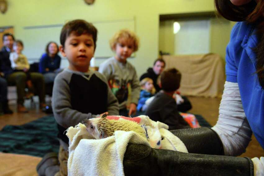 The CT Audubon Society Center at Fairfield held a Winter Storytelling and Cocoa event in Fairfield, Conn., on Saturday Jan. 28, 2017. The children along with their families got to listen to three books read by Educator Katia Shortt and were able to meet with several furry friends who stay at the center. For upcoming events like this one in Fairfield and in the rest of the state, go to the web page: http://www.ctaudubon.org/#sthash.grvGXbSb.dpbs
