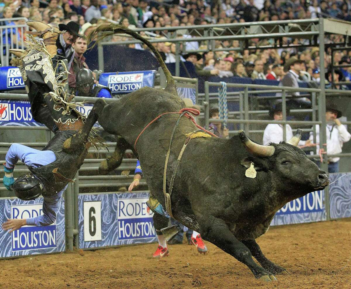 Cody Teel is bucked off a bull during the first round of the BP Super Series lV where he leads the Bull Riding event at Rodeo Houston in Reliant Stadium Thursday, March 13, 2014, in Houston. ( Johnny Hanson / Houston Chronicle )