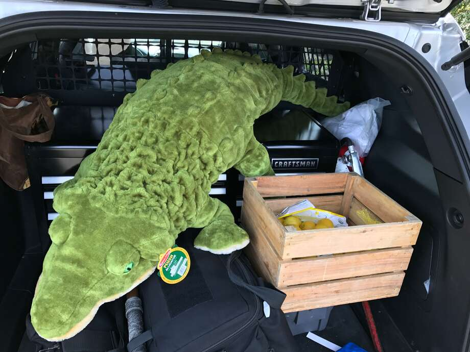 A stuffed alligator and a crateful of lemons were donated to two girls whose lemonade stand was robbed Sunday morning. Photo: Courtesy Sebastopol Police Department