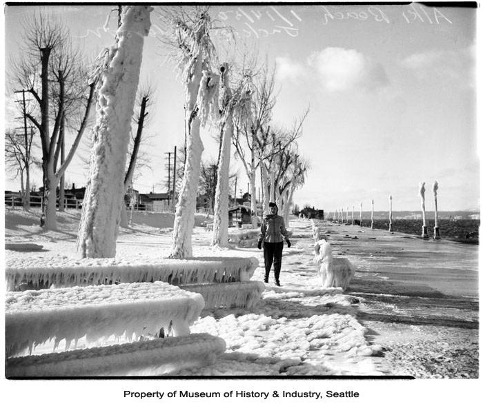 Snow stranger to bad weather: Seattle experienced a weeks-long arctic blast 70 years ago