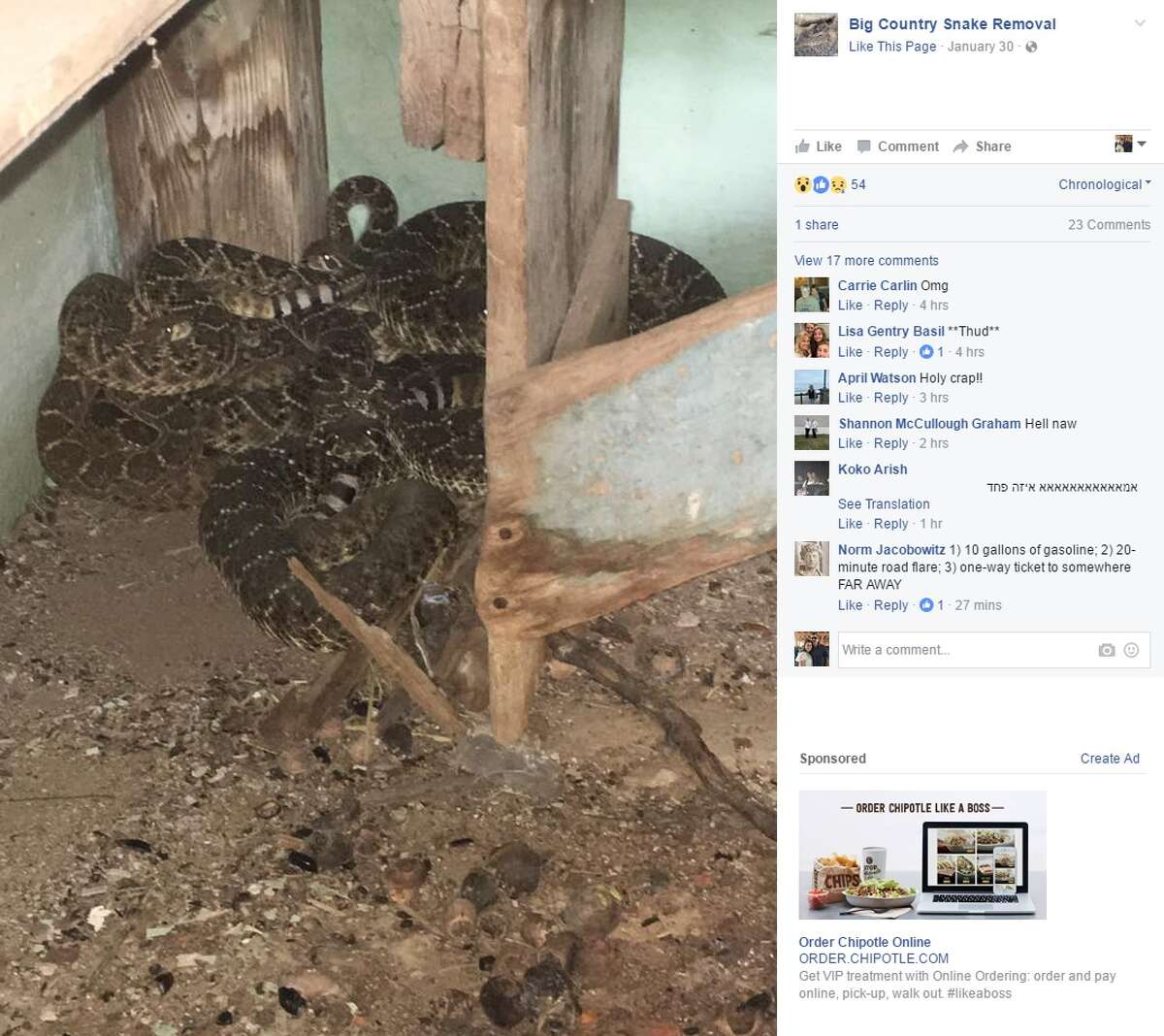 A family in Jones County had 24 rattlesnakes removed from their home in January 2017.