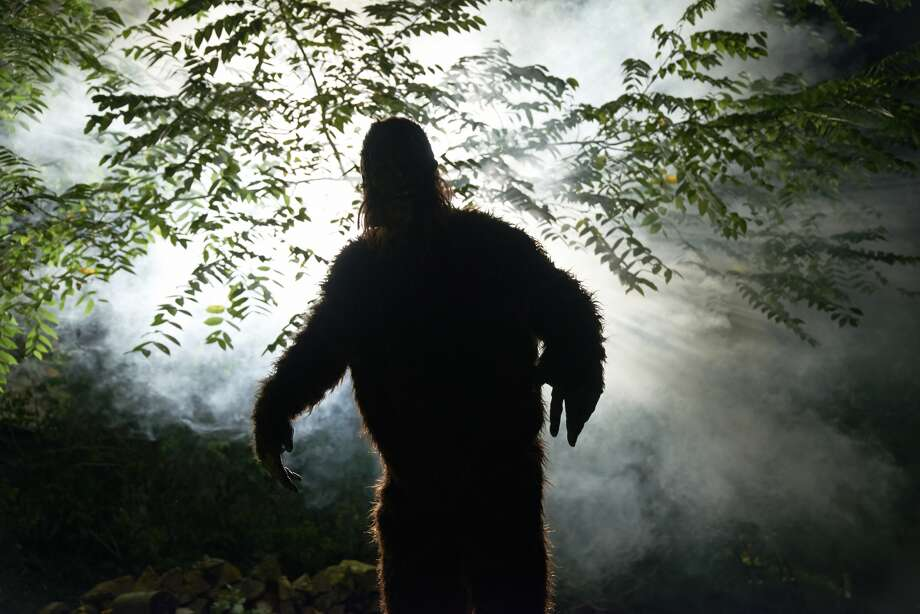 "Click through the slideshow for a few strange facts you may not know about the Capital Region and beyond.104 Bigfoot sightings were listed on The Bigfoot Field Researchers Organization website in New York state. There were 12 in Warren County and 9 in Washington County, with the latest being June 2015: ""Married couple has possible daytime sighting while boating on Lake George."""