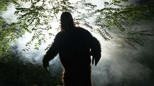 A sasquatch or big foot in forest coming towards camera arms out, light and fog around monster