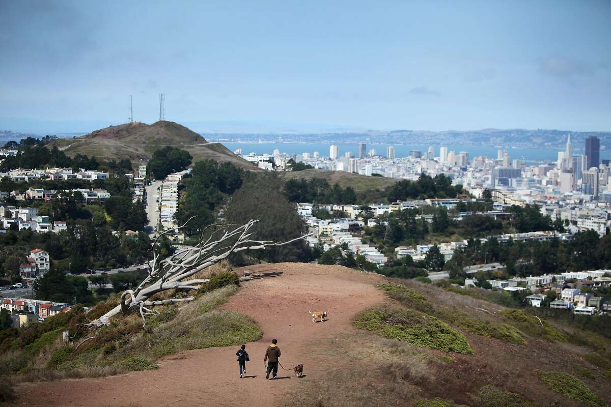 Angel Vazquez, left, walks with his father Miguel and their two dogs near the top of Mt. Davidson on August 8, 2013 in San Francisco, Calif.