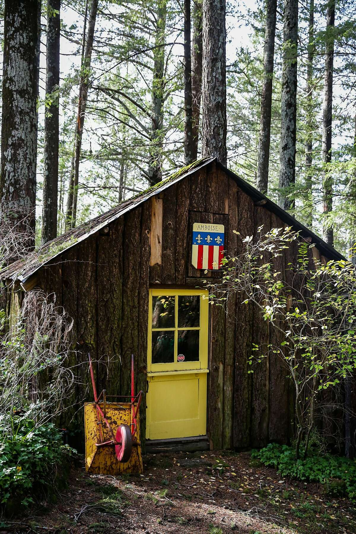 A small cabin is seen on the Napa Valley Land Trust hike to Linda Falls in Angwin, California, on Sunday, Jan. 29, 2017.