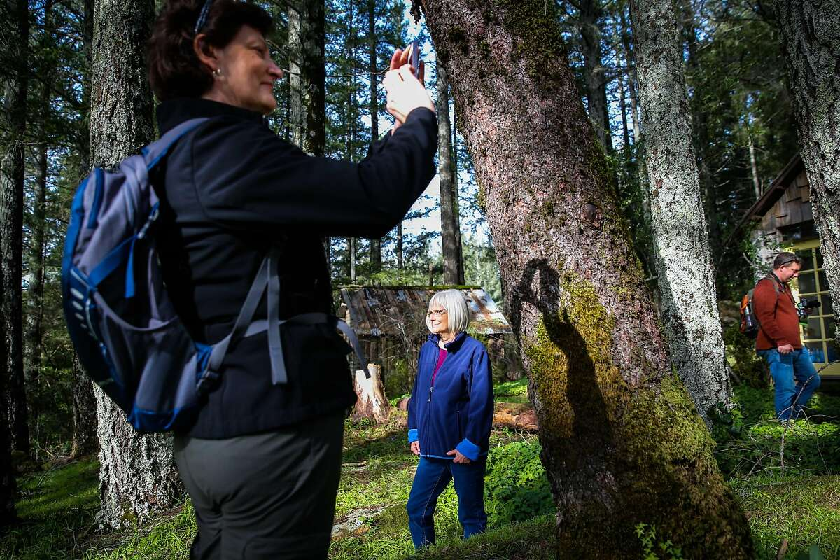 Nancy Kaemmer (left) take a photo while Leslie Ready looks at the view during a Napa Valley Land Trust hike to Linda Falls in Angwin, California, on Sunday, Jan. 29, 2017. Please note*** Reporter Andy can be seen at right. not sure if this is a problem but I have a similar photo without him if necessary. thanks
