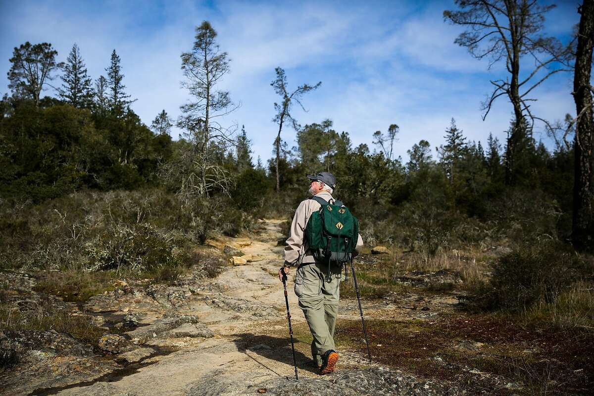 Napa Valley Land Trust guide Bruce Ivey (center) leads a hike to Linda Falls in Angwin, California, on Sunday, Jan. 29, 2017.