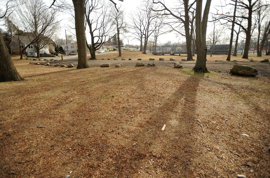 A area of Longbrook Park in Stratford, Conn. is being considered as a possible location for the town's new dog park. Photo: Brian A. Pounds / Hearst Connecticut Media / Connecticut Post
