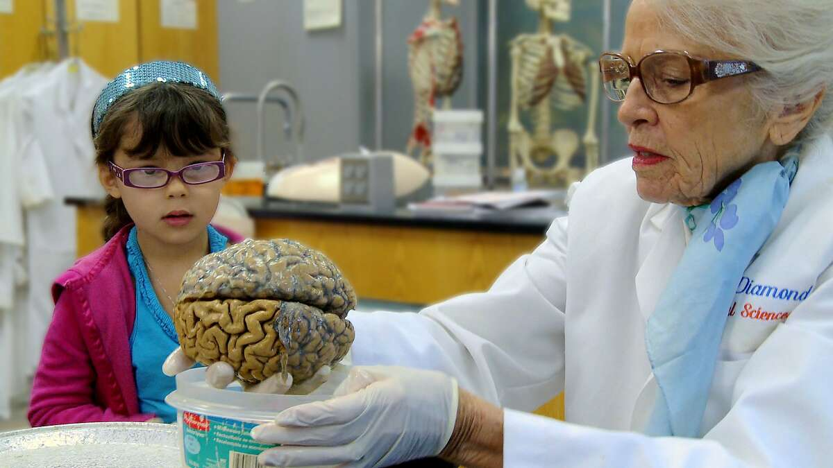 Dr. Marian Diamond teaches a young student about the human brain in the 2016 documentary