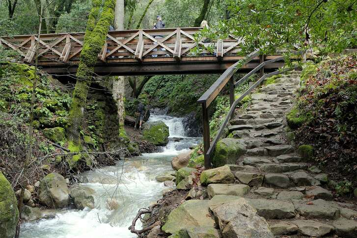 At Uvas Canyon County Park, the 1-mile waterfall loop trail starts with a rock staircase that lead to a bridge over Swanson Creek, now flush with high flows