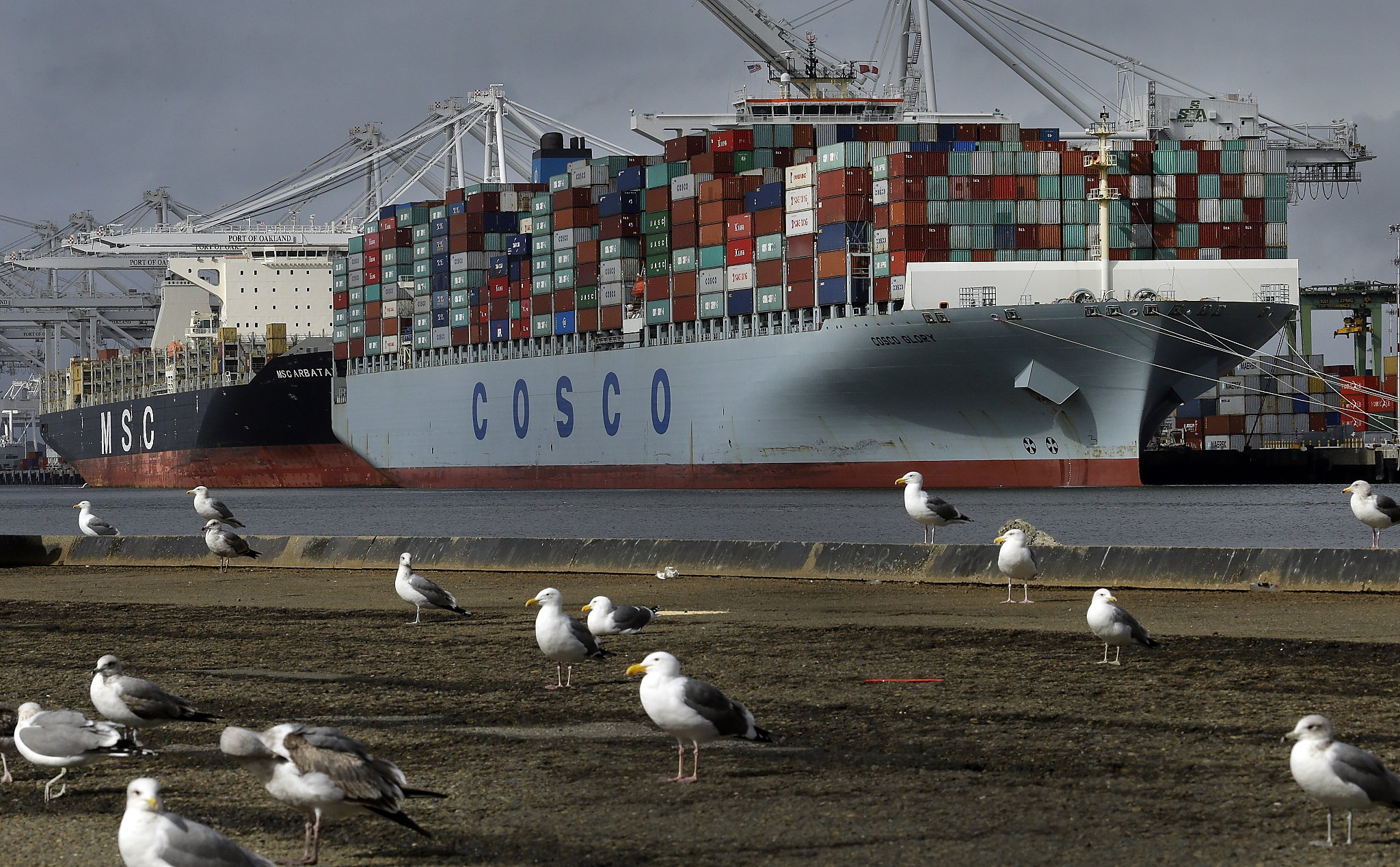 Shipping's big bang sends two global industries spinning