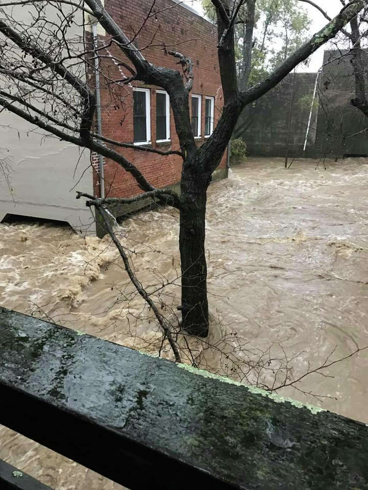 Donna Seymour, owner of Cucina restaurant in San Anselmo, captured a photo of flooding on Feb. 7, 2017.