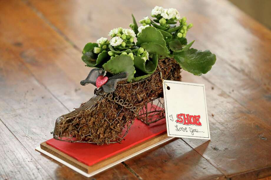 Put your best foot forward this Valentine's Day with a plant creation that is a perfect fit for your Valentine. This project was inspired by finding an old wire shoe at a garage sale.  If you can't find this specifically, you can use other mesh forms, and use the same techniques listed below to tailor it to your true love. Photo: Edward A. Ornelas /San Antonio Express-News / © 2017 San Antonio Express-News