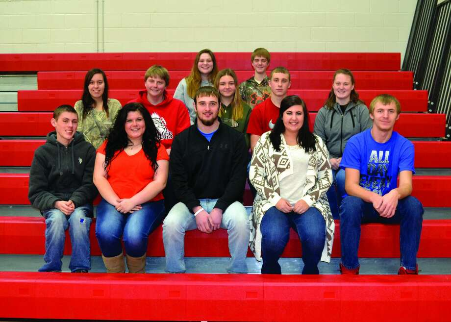 The representatives on the Owendale-Gagetown Snowball Court consist of, (front), seniors Dylan McFadden, Abby Jeffery, David Binder, Megan Badgley, and Derek Vincent; and, (middle), sophomores Martha Brooks and Cole Osentoski; juniors Natasha Dubs, Luke Retford and Morgan Ondrajka; and, (back), freshmen Sierra Mascorro and Andrew Roemer. Photo: Submitted Photo