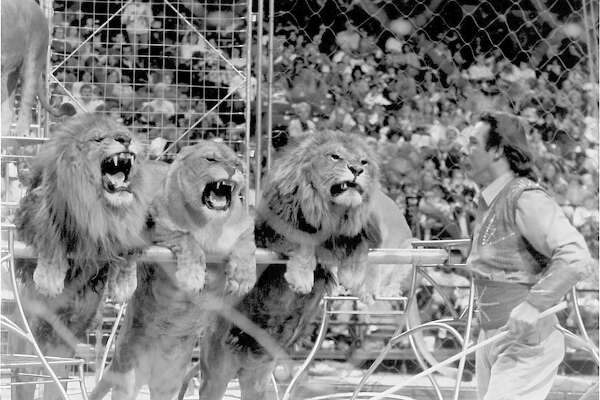Larry Allen Dean performs with lions during the Ringling Bros. and Barnum & Bailey Circus.  Enterprise archive photo