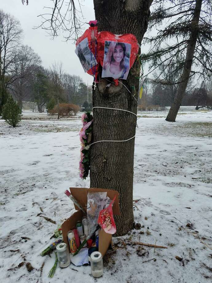 A memorial in Washington Park in Albany marks where Rajine Martinez, 21, was killed in a hit-and-run crash on Feb. 4, 2017. The circumstances of the death are unclear, but many who use the park have long been concerned about speeding traffic. (Chris Churchill / Times Union)
