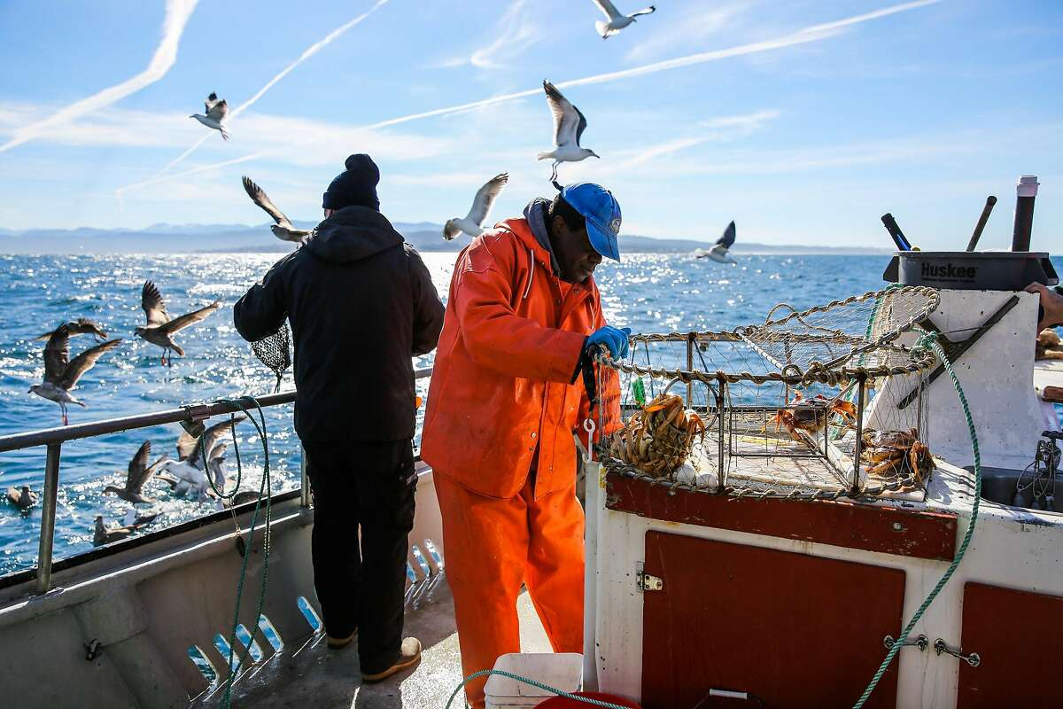 Deckhand Monty Truitt (right) unloads crabs from a crab trap while guiding a fishing and crabbing trip with Randy's Fishing in Monterey, California, on Monday, Jan. 30, 2017.