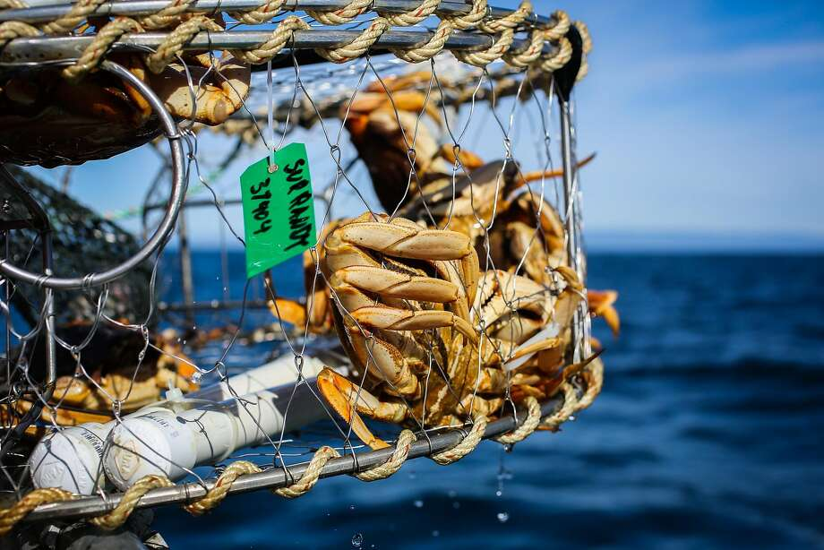 A crab trap sits on the edge of the Sur Randy in Monterey Bay. Photo: Gabrielle Lurie, The Chronicle