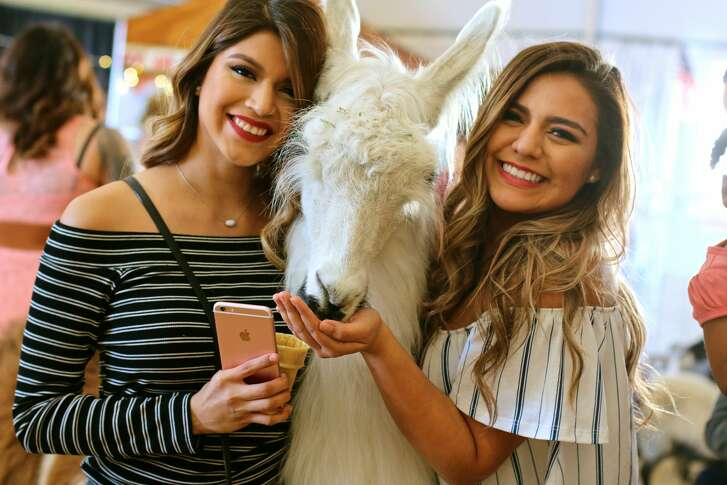 San Antonio Stock Show & Rodeo opened Thursday, see who was there for the festivities Feb. 9, 2017.