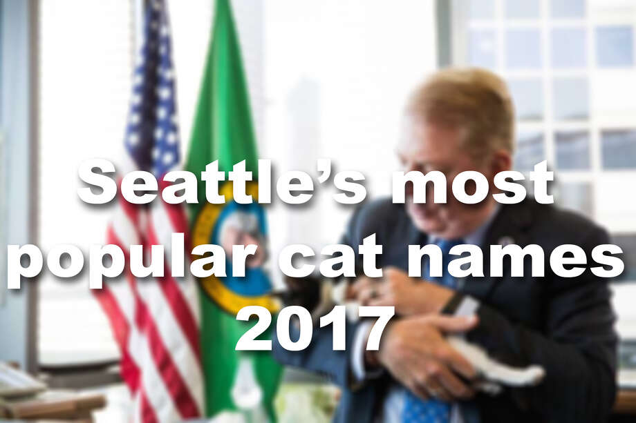 We looked at Seattle Animal Shelter to find the most popular cat names in Seattle. Find out how cat lovers christened their pets and check out some of our favorite rare pet names. Photo: Seattlepi.com