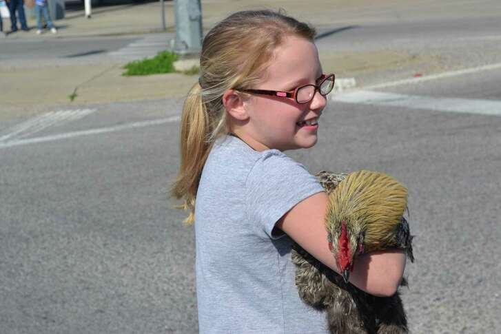A child beams with delight at having captured a chicken on the streets  of Iowa, during the Mardi Gras Chicken Run.