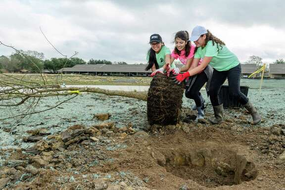 From left, Andrea Monsivais, 15, Janine Morales, 16, and Gloria Contreras, 17, help the Exploration Green Conservancy's effort to plant 60 mature, 45-gallon trees in the water authority's detention area development project.