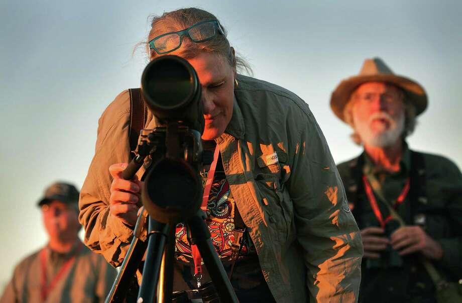 """Bird Til You Drop"" which is part of the Laredo Birding Festival,on Thursday, Feb. 9, 2017. Photo: Bob Owen, Staff / San Antonio Express-News / ©2017 San Antonio Express-News"