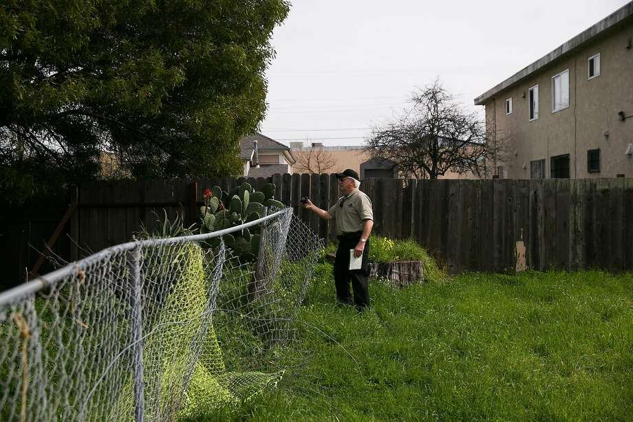 Code enforcement officer, David Rogowski, checks on a property in Richmond, Calif. Monday, February 13, 2017. Photo: Mason Trinca, Special To The Chronicle