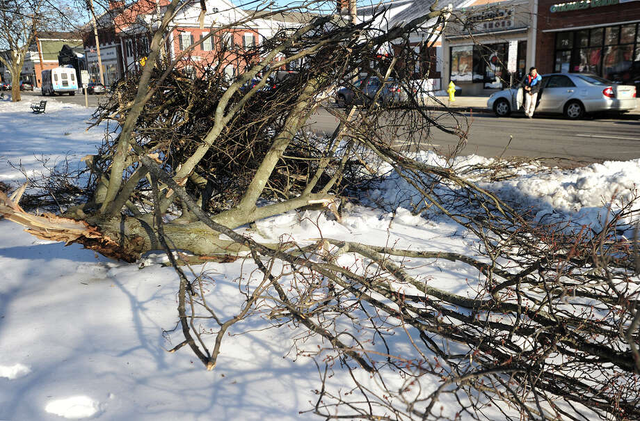 A large tree limb lies on the Milford Green after it broke loose in heavy winds and blocked traffic on Broad Street in Milford, Conn. on Monday, February 13, 2017. High winds were responsible for downed limbs and power outages around the region on Tuesday. Photo: Brian A. Pounds, Hearst Connecticut Media / Connecticut Post
